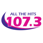 All The Hits DC's Mix 107.3 WRQX Washington Jan Jeffries Rick Gillette 94.7 WLS-FM 95.5 WPLJ